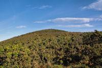 Le sommet de Mandale