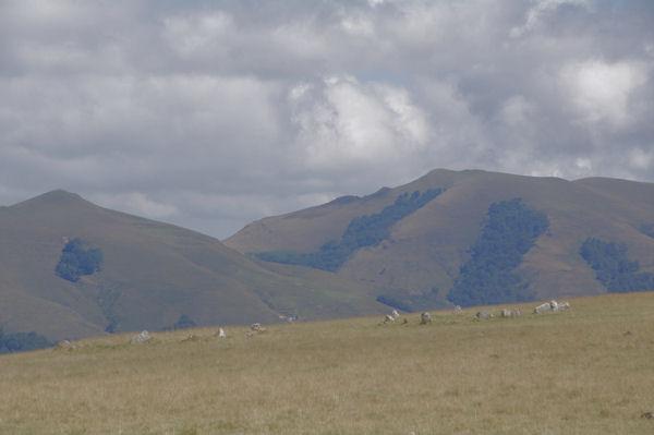 Deux cromlechs à Occabé, au fond, les Pics Mendibel et Chardica