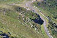 Des moutons au Pas des Alpins