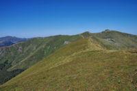 Puy Brunet et Plomb du Cantal