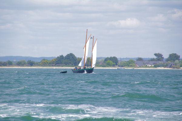 Un vieux gréement vers la Pointe de Liouse dans le Golfe du Morbihan