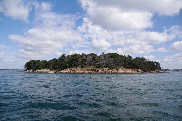 L_Ile Longue dans le Golfe du Morbihan