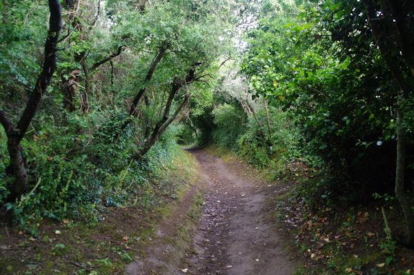 Le chemin cotier vers la côte d_Héno