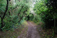 Le chemin cotier vers la cote d'Heno