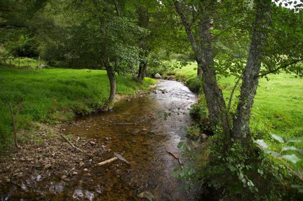 Le ruisseau de Daze à la sortie d'Espeyrac