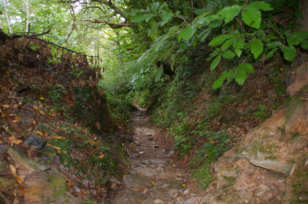 Le chemin de descente sur Conques