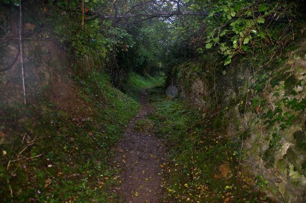 Le chemin menant directement à l&#39aiguille du Cingle