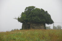 Une caselle entre Tremont et Filsac
