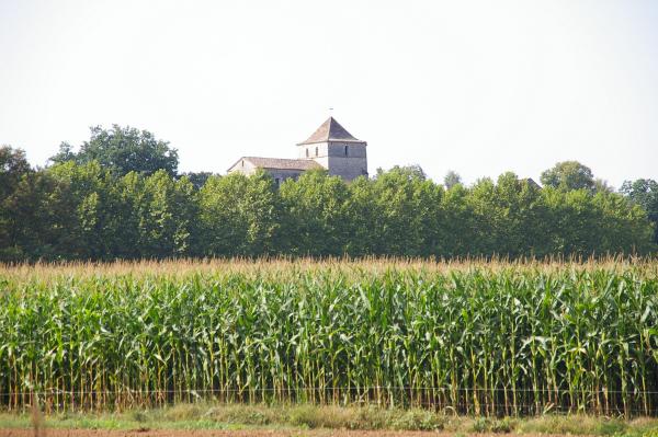 Le château d&#39Arcambal