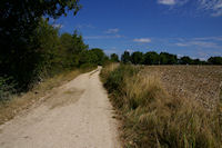 Le GR65 vers Font Maurine