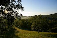 Brumes matinales a La Baysse