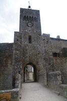 Le portail d'entree de Larressingle