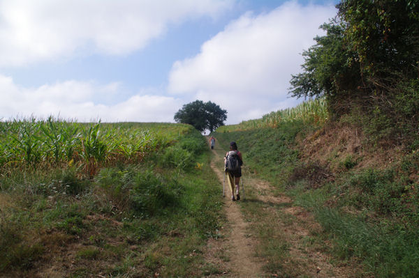 Le chemin est encore long vers Compostelle…