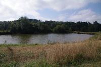 Un etang de l'elevage piscicole du Moulin du Pouy