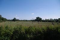 Les champs vers Nogaro