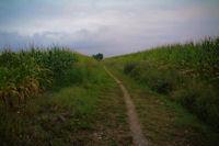 Le chemin vers Traguette