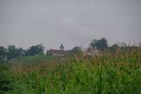 Castillon depuis Lamothe
