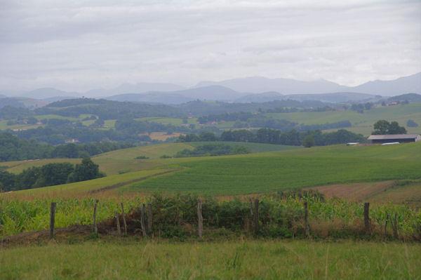 Paysages vers Lacorne, les Pyrénées sont en vue