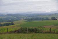 Paysages vers Lacorne, les Pyrenees sont en vue