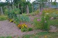 Joli jardin vers Berduque
