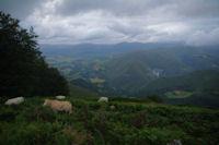 La vallee de la Nive depuis Pagalepoa