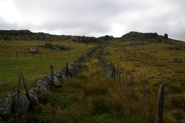 Le chemin du Puech del Pont