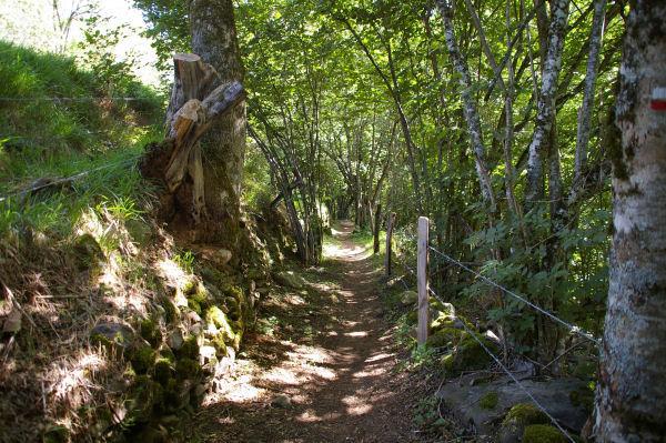 Le chemin descendant sur St Chély d&#39Aubrac