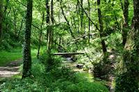 Passage du ruisseau de la Brousse