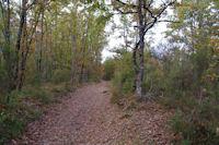 Le chemin vers La Garenne