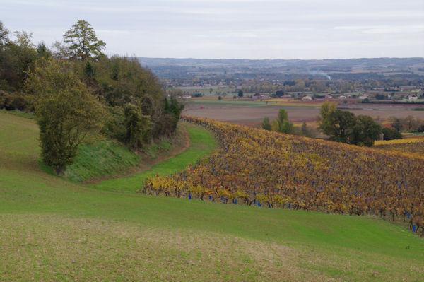 La vallée du Tarn depuis Le Bouriou