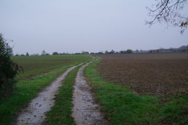 Le chemin vers Les Bordes, on apperçoit au loin Notre Dame du Bourg à Rabastens