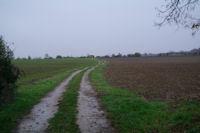 Le chemin vers Les Bordes, on appercoit au loin Notre Dame du Bourg a Rabastens