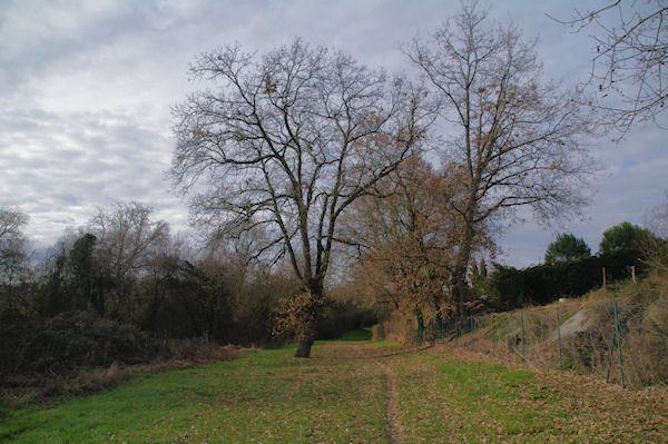Dans le vallon du ruisseau du Pommier