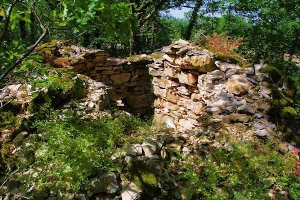 Des ruines vers Pareyrets