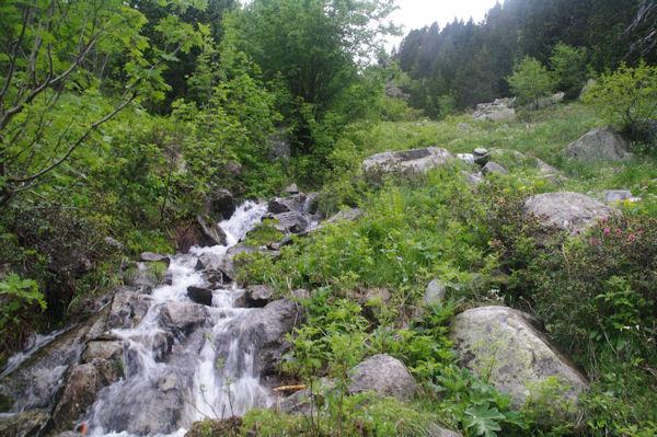 Le torent descendant de la vallée de Forcau