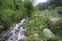 Le torent descendant de la vallee de Forcau