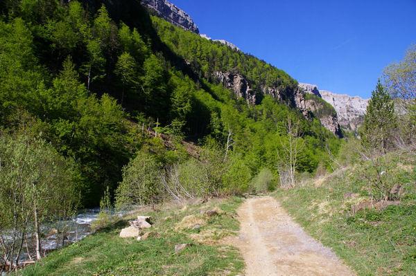 La vallée d&#39Arazas