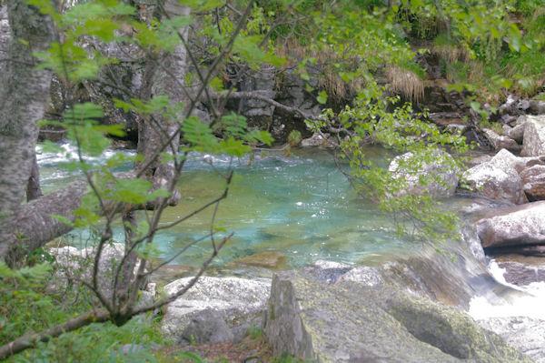 Les eaux vertes du Grist vers la Palanca de Presentet