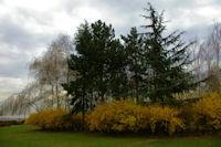 Un peu de couleur derriere le Parc d'Exposition de Paris Nord Villepinte