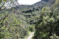 Le chemin descendant dans le Ravin de Matte Arnaude