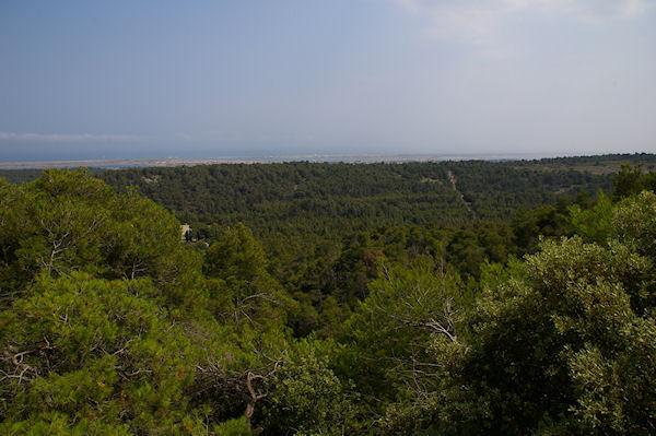 Vue vers Gruissan depuis le Plateau de Notre Dame