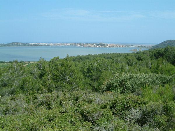 Gruissan et son étang depuis Capoulade