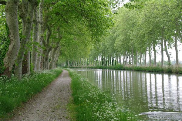 Le Canal du Midi à La Peyruque