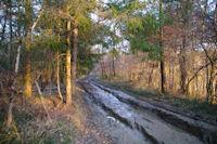 Le chemin boueux vers la Bac