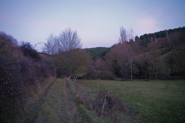 Le chemin dans le vallon du ruisseau de Limoux