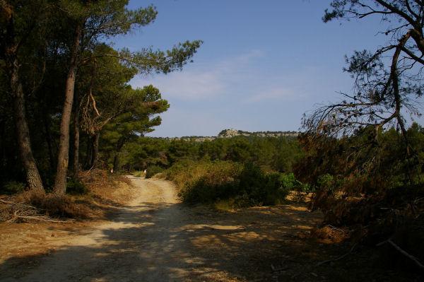 Le chemin vers la bergerie ruinée de La Garde