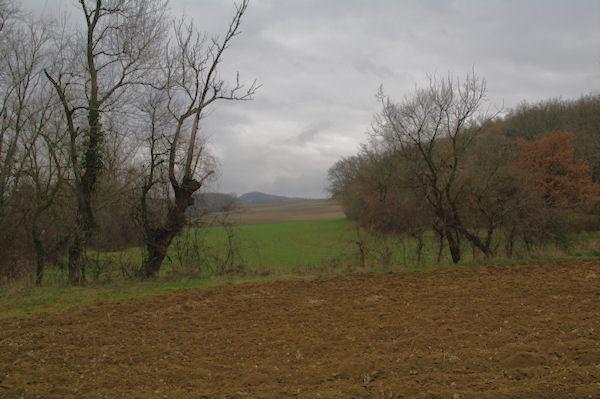 Le vallon du ruisseau de Fixiège