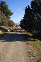 La voie Romaine secondaire des Romieux