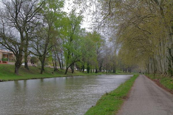 Le Canal du Midi en arrivant à Castelnaudary