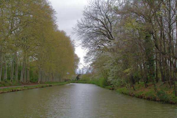 Le Canal du Midi près de Castelnaudary